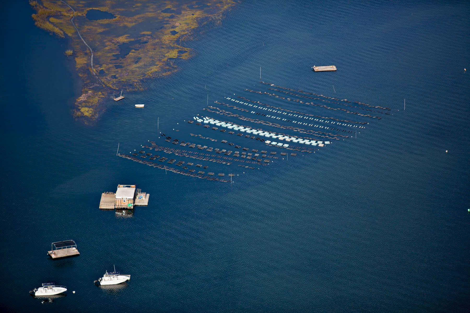 Floats, Chatham, Massachusetts 2018 (180930-0293)