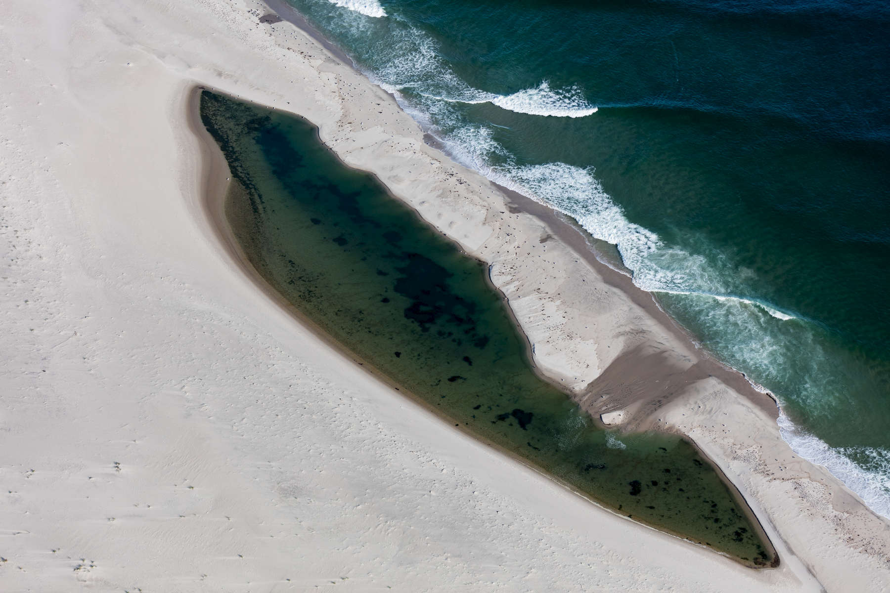 Barrier Island on Barrier Island, Chatham, Massachusetts 2018 (180930-0309)