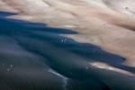 Beach Waders, Sankt Peter-Ording, 2012 (070801-0261)