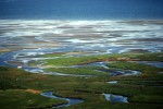 Stream Meanders Toward Cape Cod BayEastham, MassachusettsRef #: LS_2099_12