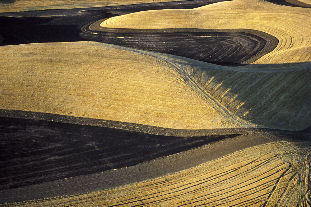 <b>Plowing and Harvesting Patterns on the Palouse</b>Pullman Area, WashingtonRef #: LS_4418_20