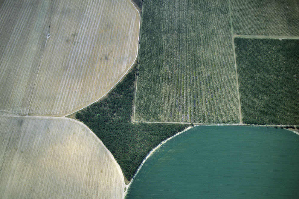 <b>Three Pivot Irrigators Intersect a Rectangular Field</b>Macon, GeorgiaRef #: LS_7854_26