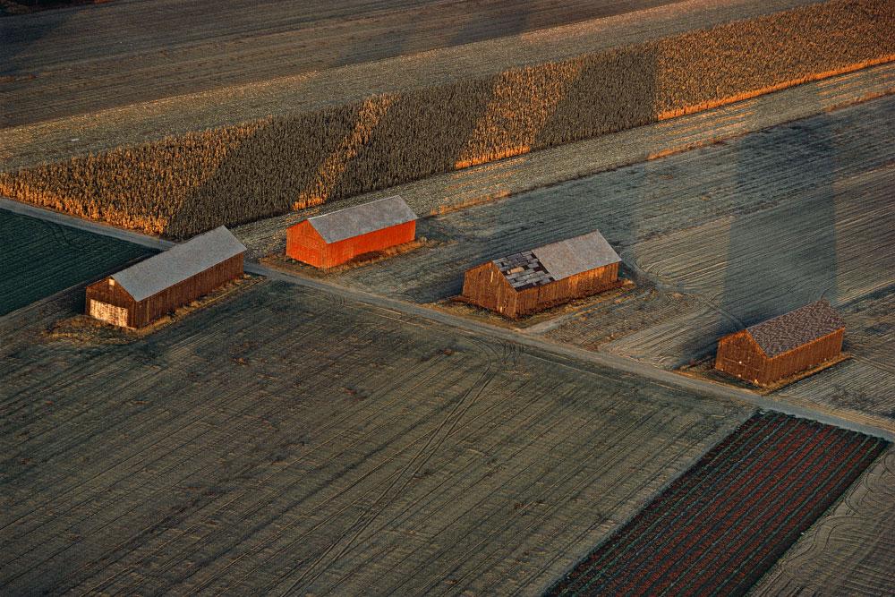 Hadley Tobacco Barns, Hadley, Massachusetts (LS_0579_25)