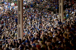 9/25/2016 Chicago, IL -Years of ups and downs, near misses and what-could-have-beens have only made Cubs fans more resilient in their support for the team on Chicago's North side. (Sally Ryan for The New York Times)