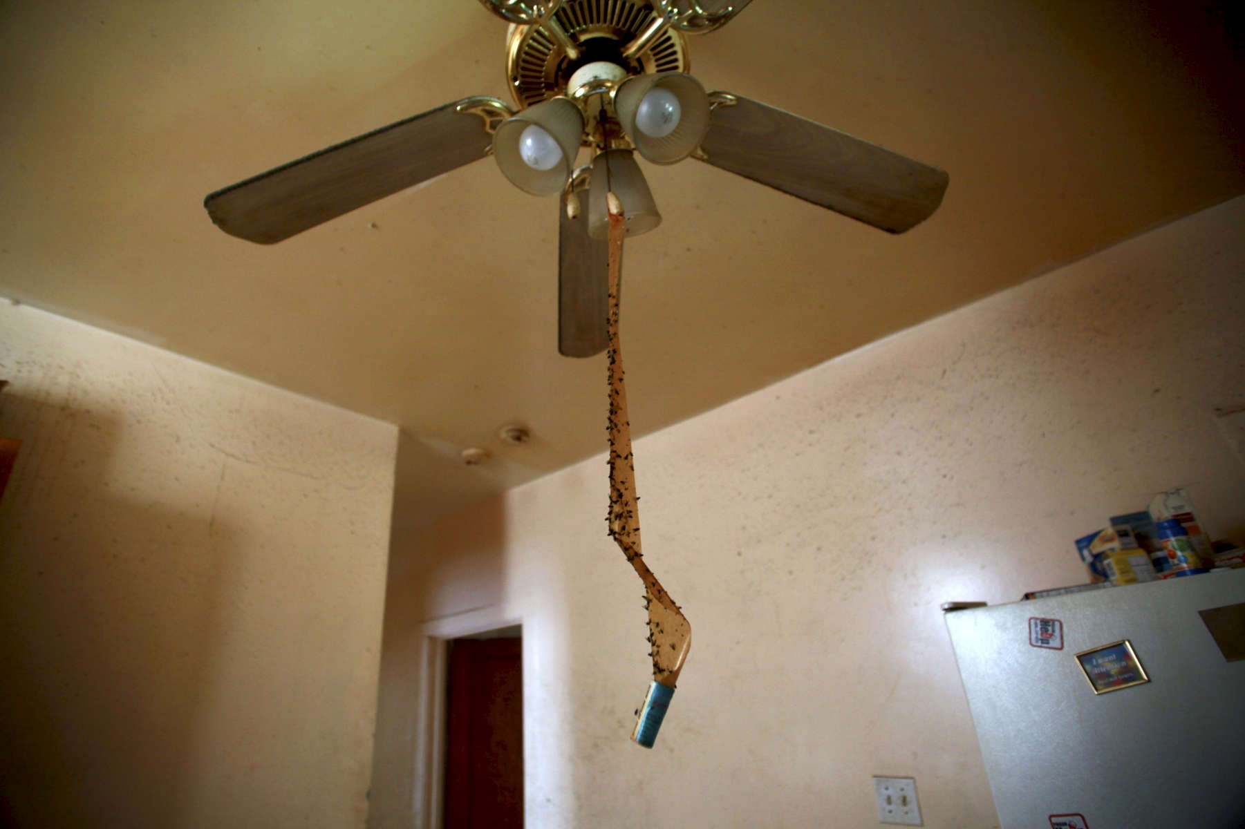 Inside an apartment on Chicago's west side, fly paper hangs from  a ceiling fan and remnants of the past owners still decorate the refrigerator. The building, which is in foreclosure, is owned by US Bank.