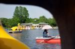 Ueno, park, Tokyo, Japan, swan boat, boat, swan, umbrella, rowboat, oar, couple, girl, lake, trees, sunny