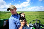 farmer, dog, baseball cap, green, field, acres, crops