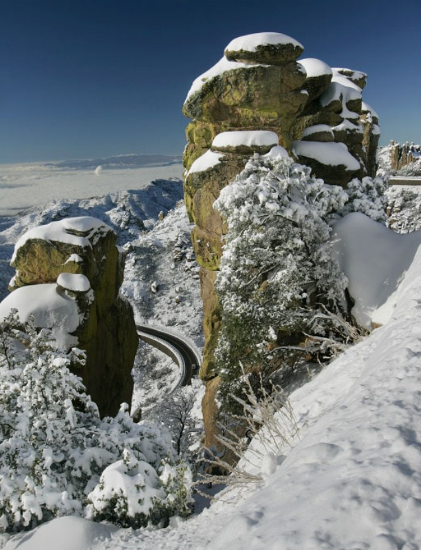 Snow on Mount Lemmon