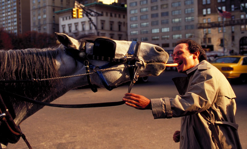 BILLY_HORSE