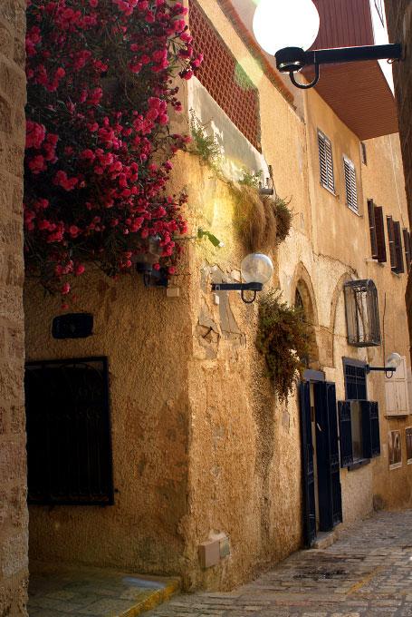 A street in Jaffa, Israel. By photographer Adena Stevens