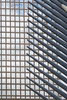 nyc_lines