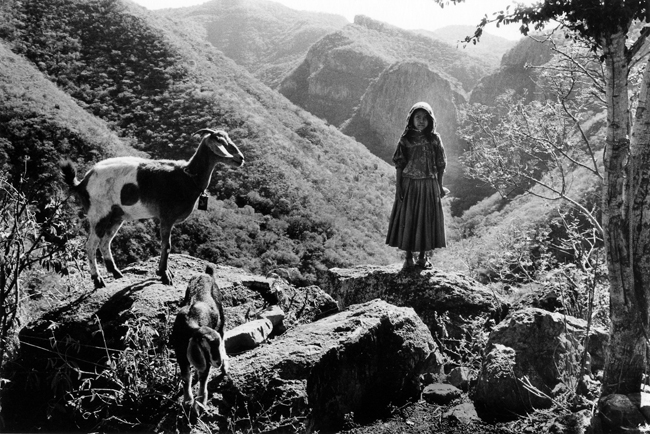 Rosa and Goats, Huicholes, Sierra Madres Mountains
