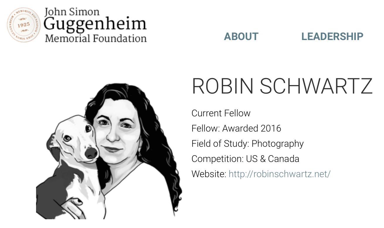 Guggenheim2016_RobinSchwartz
