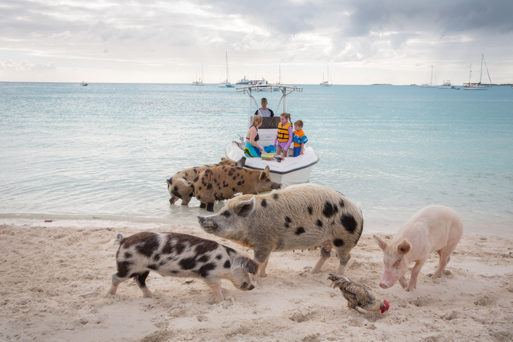 Their Major Cay