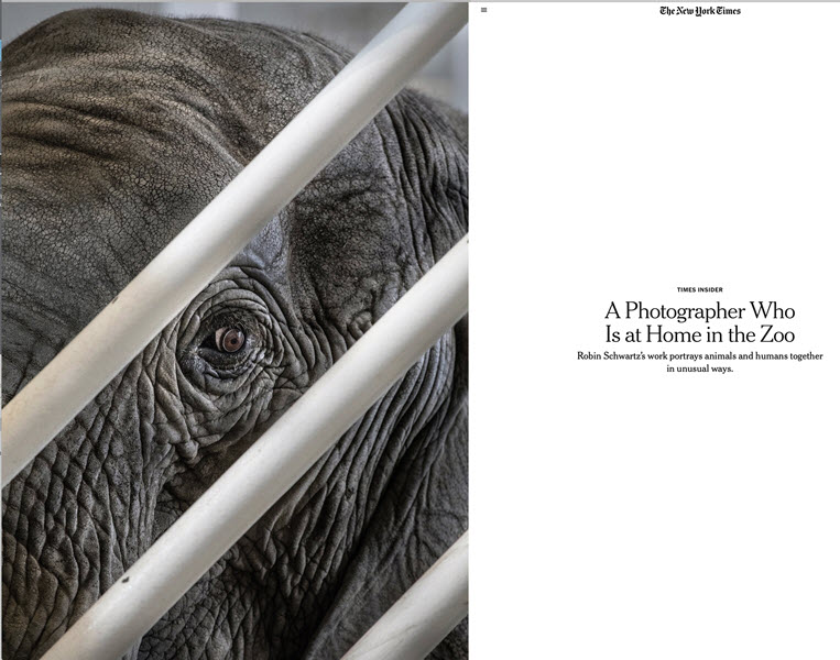 A Photographer Who Is at Home in the Zoo July 14, 2019 New York TimesTimes InsiderPage 2