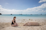 New York Times Magazine Bahama Pigs
