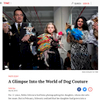 TIME MAGAZINE LIGHTBOX -Dog Culture