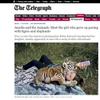 Telegraph Magazine UK Interview/Gallery
