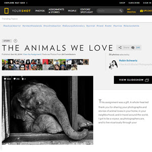Published Story: The Animals We Love http://yourshot.nationalgeographic.com/stories/animals-we-love/ Published Story: The Animals We Love