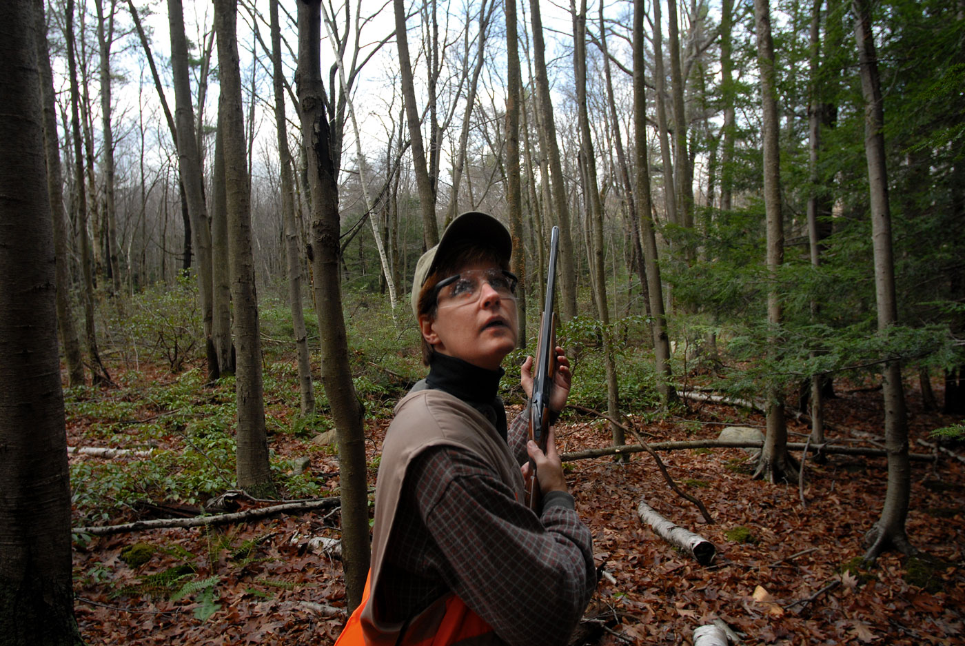 Shirley Jurkowski, of Ellington, watches and waits for a pheasant to be flushed while hunting with friends.  Jurkowski was out hunting with her friend, June Shew.