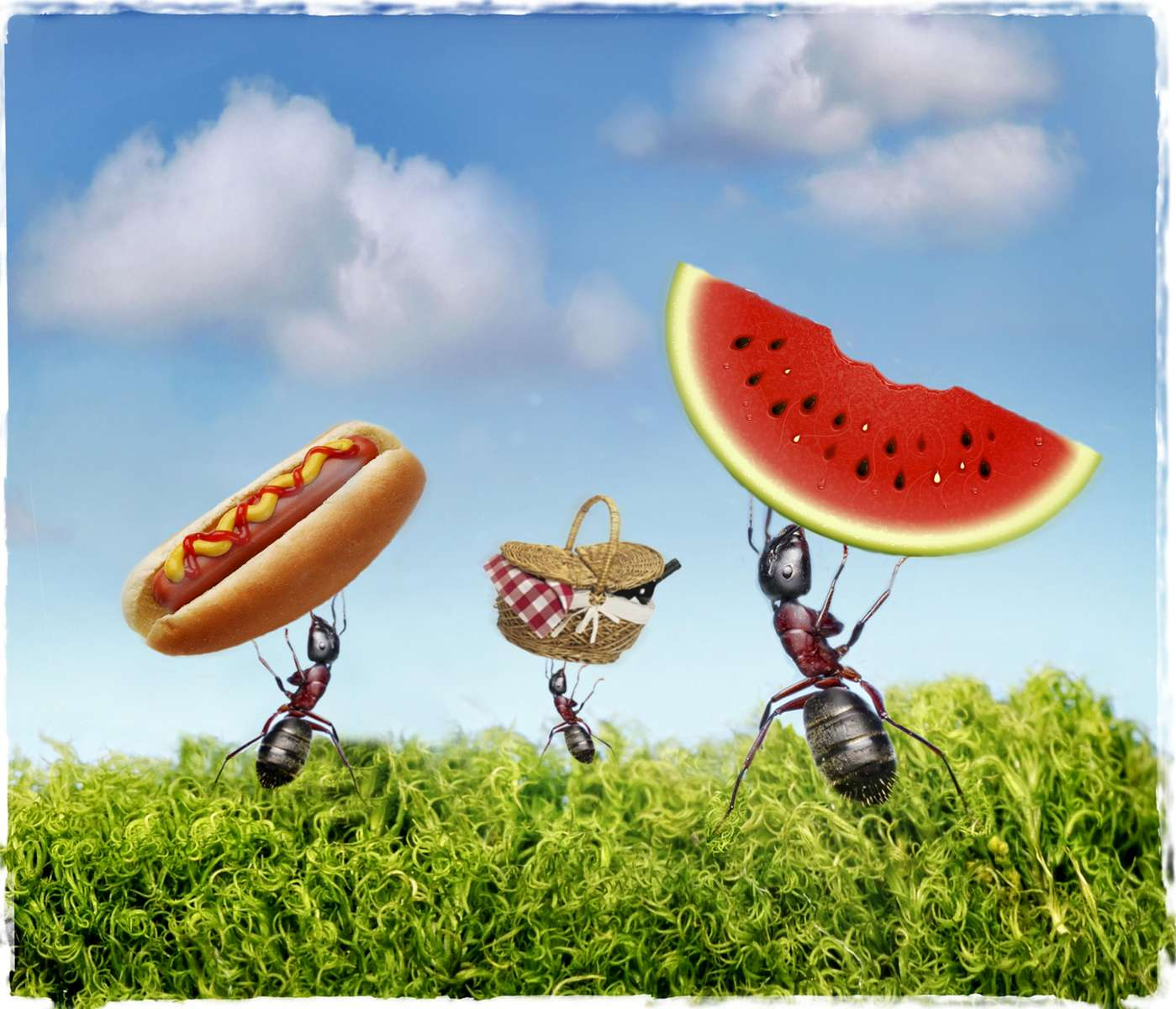 A photo illustration on a story about {quote}Antsy to find the perfect picnic spot.{quote}