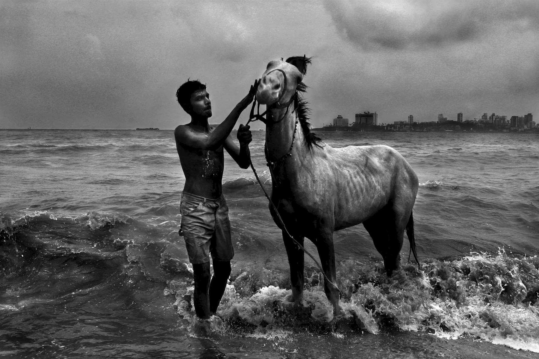 A man washes his horse in the Arabian Sea in Bombay, India. He uses his horse to give rides along the sea.