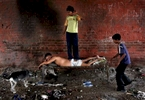 A child gives his father a make-shift massage under a bridge in New Delhi.