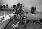 In one of the many breaks in between patrols, Chief Petty Officer Scott Buckingham, 39, of Newport News,  pets dogs that gather at the Basra Operations center. With more down-time between patrols, officers find ways to fill the time and unwind.