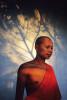monkshadow