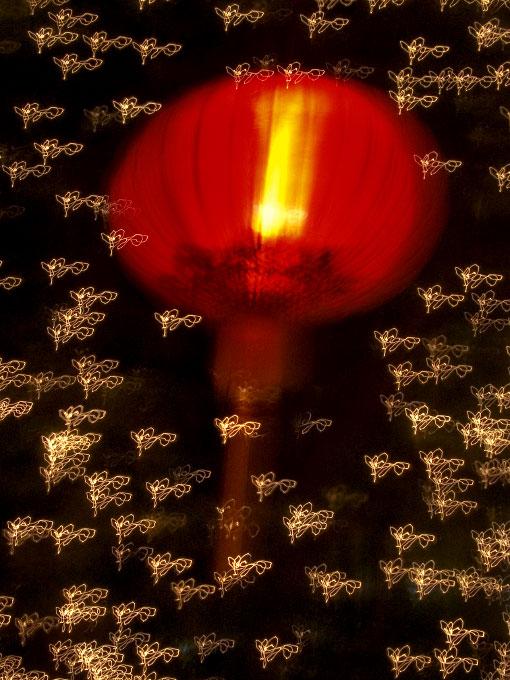 lantern signifying Year of the DogHong Kong