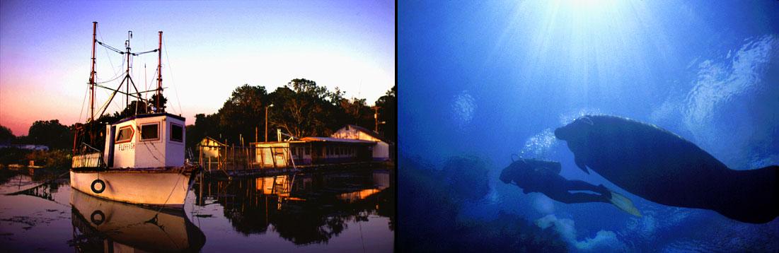 fishing boatCrystal River, Floridadiver and a manateeCrystal Springs, Florida