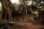woman in classic dressTa Prohm TempleAngkor complex - Cambodia