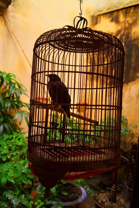 birdcage in the courtyardof the Memorial HouseHanoi, Vietnam