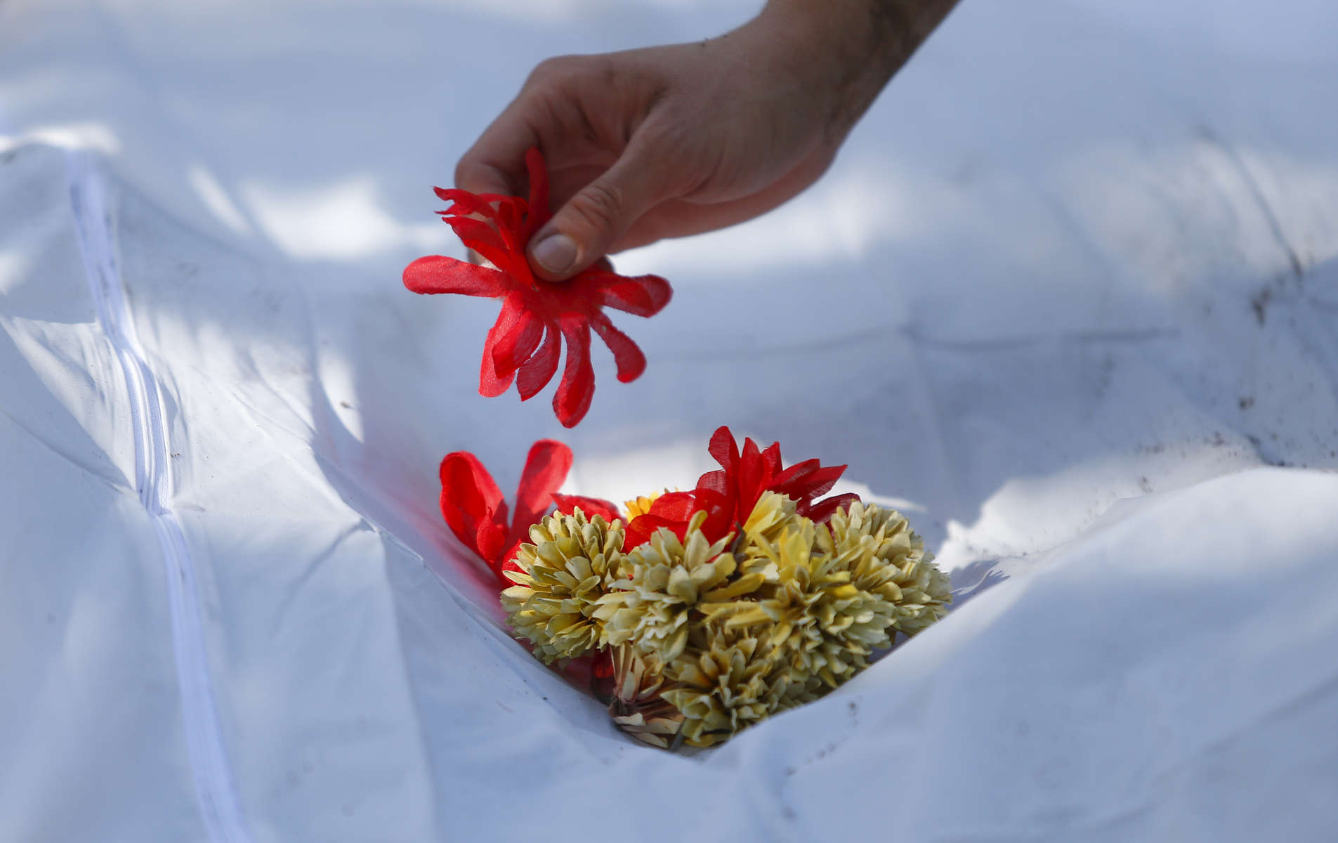 A flower placed by a member of the Baylor forensics team rests on the body bag of an exhumed body of an unidentified migrant. More than 6,000 immigrants have died crossing the southern border since 1998, according to federal records, and hundreds of them have never been identified.
