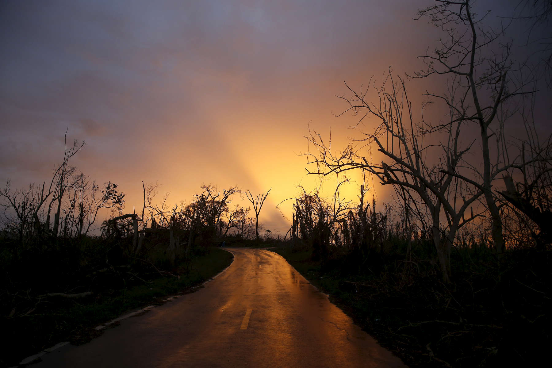 Morovis, Puerto Rico -- 9/30/2017 -  Outside of San Juan, signs of Hurricane Maria are everywhere. A countryside once lush has been entirely stripped of its foliage in Morovis.