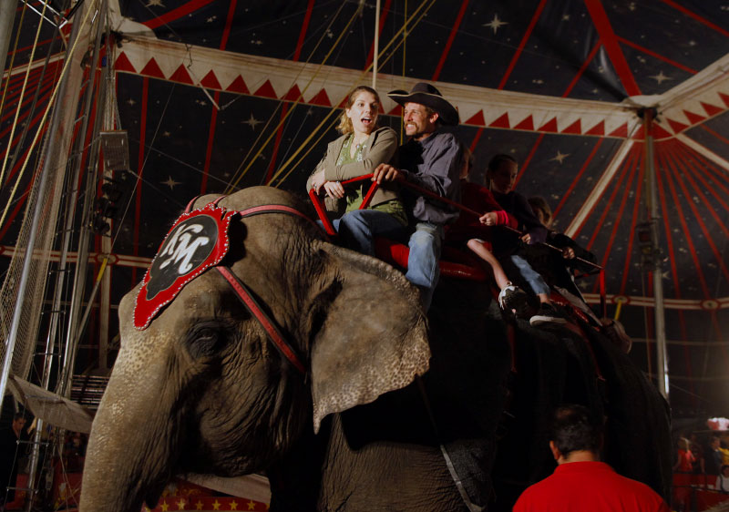 A woman reacts as she rides an elephant during intermission at the Kelly Miller Circus in Crandall, Texas March 18, 2009.