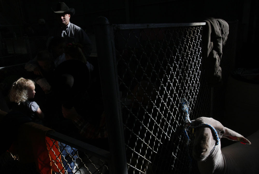 Exhibitors are seen beside a goat at the Stock Show in Fort Worth, Texas January 31, 2009