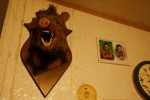 A wild boar's head adorns the wall of trapper Harold Renfro's home beside a school portrait of one of his sons in Sacul, Texas December 6, 2008.
