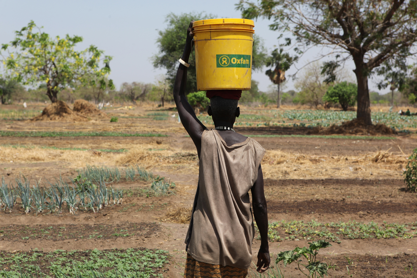 Women for Women International Sudan Chapter runs the Pacong Community Farm for women from Rumbek East, Lakes State, South Sudan. The farm supports vegetable farming, an aviary honey project, livestock and poultry. Rose Rodin collects water for her crops on the farm.