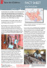 Series of Fact Sheets (Country, State and Sector Reports) written and designed for Save the Children in South Sudan, 2011-2012