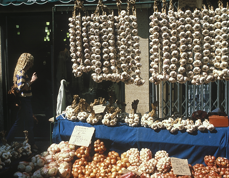 Garlic girl,Provence, France