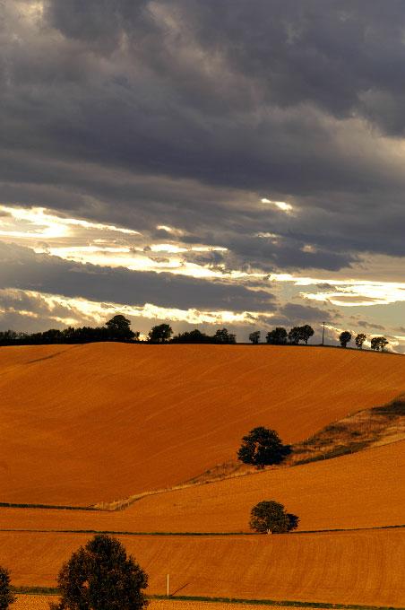 Gascogne landscapeFrance