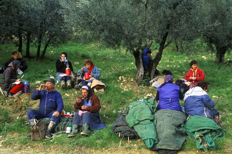 Olives09