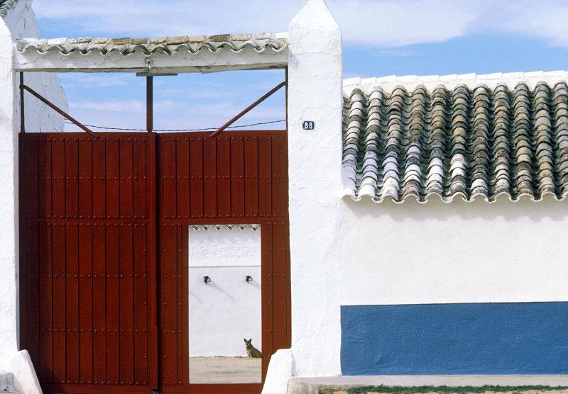 Siesta, Spain