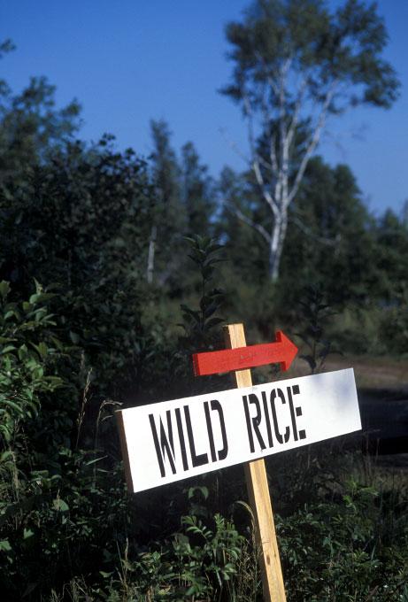 Wild-rice-sign-copy