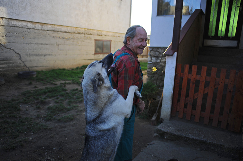 KOLONTAR, HUNGARY.  Laszlo Retnager, 63, with his dog in the yard of his home on November 25, 2010 after visiting with volunteer psychologists from the organizations Helperek who have come to Kolontar in the aftermath of an industrial accident at the MAL plant in nearby Ajka, Hungary on October 4, 2010 that sent a torrent of toxic red alumina sludge gushing through a section of Kolontar and several surrounding villages, killing ten, injuring hundreds, and leaving several families homeless.  While many locals were initially resistant to their assistance given a deep aversion to a profession many thought was just to assist crazy people, many locals have warmed to their presence and welcome their guidance in a difficult time.