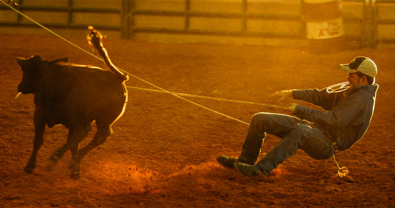 Chase Chapman, 19, a freshman criminal justice major, works on calf roping during a Troy State University rodeo team practice.