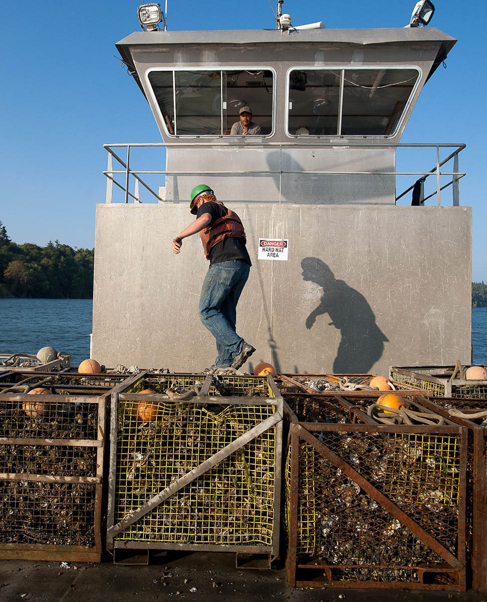 Oysters_Bins_Barge