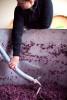Wine_Ramsey_Vat