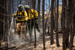 Idaho_Beaver_Creek_Fire-006